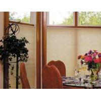 Buy cheap Deluxe 3/8 Translucent Double Cell Shades from wholesalers