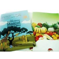 Buy cheap Poster and Folder Printing from wholesalers