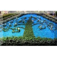 Buy cheap Recycled Garden Glass Mulch for Landscaping from wholesalers