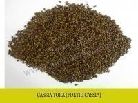 Buy cheap CASSIA TORA ( Foetid cassia ) from wholesalers