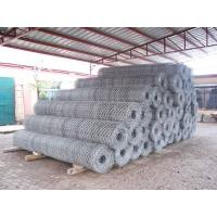 Wholesale Hexagonal Wire Mesh 03 from china suppliers