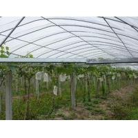 Frost Protection Fabric Jiaheng Manufactures