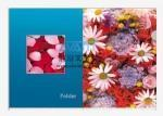 Wholesale 3D clear file folder 3d-002 3D file folder from china suppliers