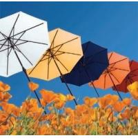 Buy cheap Patio Umbrellas from wholesalers