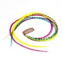 Buy cheap Rainbow - Celebrity Extra Long Clip In Feather Hair Extension from wholesalers
