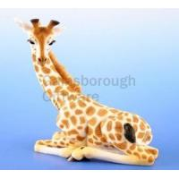Buy cheap Giraffe Figure Leonardo Collection from wholesalers