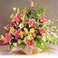 Wholesale Flowers Basket from china suppliers