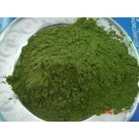 Wholesale wheat grass powder from china suppliers
