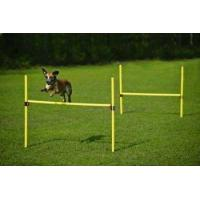 Buy cheap Dog Agility Training Equipment - JUMP from wholesalers
