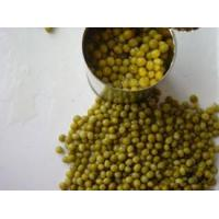 Wholesale Vegetables Green Bean from china suppliers