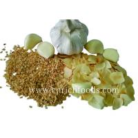 Wholesale Dehydrated/Dried Garlic from china suppliers