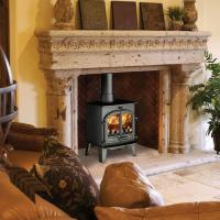 Buy cheap Stoves Cleanburn Lovenholm 2dr from wholesalers