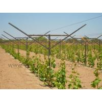 Wholesale Open Gable Trellis System from china suppliers