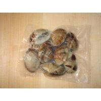 Wholesale Frozen Cooked Short Necked Clam from china suppliers