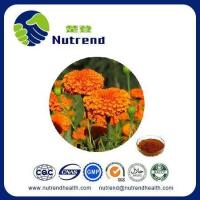 Wholesale Standard Herb Extract Marigold Extract from china suppliers
