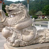 Wholesale The Dragon Series from china suppliers