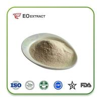 Wholesale Horseradiah Powder Specification: pure powder from china suppliers