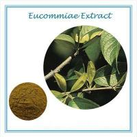 Buy cheap gmp certificate Eucommia leaf extract Chlorogenic Acid 50% from wholesalers