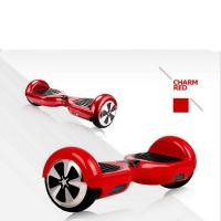Electric Scooters CY-S1