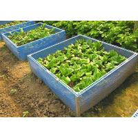 Buy cheap Square Foot Garden from wholesalers