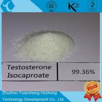 Buy cheap Testosterone Isocaproate from wholesalers