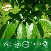 Buy cheap eucommia leaf extract eucommia leaf extract from wholesalers