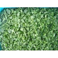 Wholesale Frozen Spinach RC-FV-015 from china suppliers
