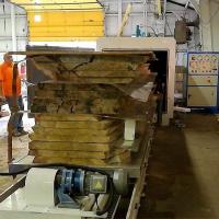 Buy cheap USA New York Eastern Cottonwood Drying from wholesalers