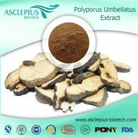 Buy cheap Grifola Frondosa Extractpowder Powder Supplier Wholesale from wholesalers
