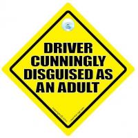 Buy cheap Driver Cunningly Disguised As An Adult Car Sign, Baby On Board Sign Style, Joke Car Sign from wholesalers