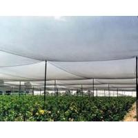 Wholesale Anti-Hail Net made of high-density polyethylene, resistance to stretching from china suppliers