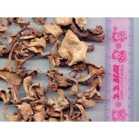 Buy cheap 3.11b-Chanterelle from wholesalers