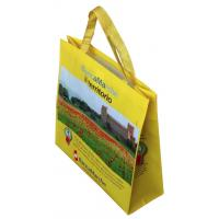 China PP Non Woven Bag Handy Recycled Shopping PP Non Woven Bags on sale