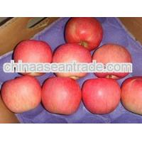 Buy cheap Agriculture 2013 new fresh apple chinese apple fruit gala apple product