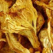Buy cheap chanterelle from wholesalers