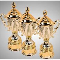 Wholesale ST1030-001PL39 Plastic Trophy 39cm High from china suppliers