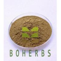 Wholesale Shiitake Mushroom Extract Powder Polysaccharides 10% 30% Protect Liver Anticancer from china suppliers