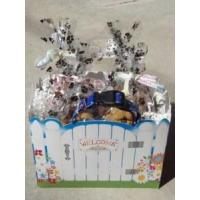 Buy cheap Welcome Home Dog Gift Basket - Shortys Gourmet Treats from wholesalers