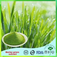 Wholesale Barley Grass Extract from china suppliers
