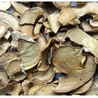 Wholesale Dehydrated Mushroom Slices from china suppliers