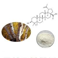 Wholesale Birch-Me from china suppliers