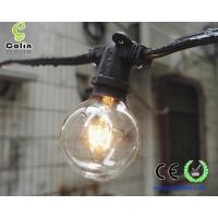 G40 String Lights with 25 Clear Globe Bulbs-UL listed for Indoor/Outdoor Commercial String Lights Manufactures