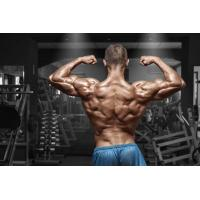 Buy cheap Ipamorelin GHRP increasing muscle and gain muscle from wholesalers
