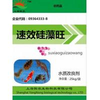 Wholesale Wang (available diatom diatom nutrient) from china suppliers