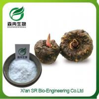 China Herbal Extract San Qi Powder, Wholesale Panax Notoginseng Extract on sale