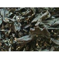 Wholesale Seasoning ready-to-eat seaweed from china suppliers