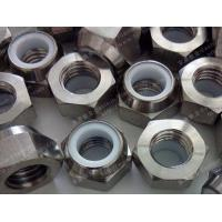 Wholesale Titanium Hex Nylon Nut from china suppliers