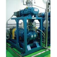 Buy cheap Rotary Vane Vacuum Pumps Roots-screw vacuum system from wholesalers