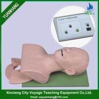 Buy cheap electronic human trachea intubation training manikin (with Alarm) from wholesalers