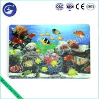 Wholesale CE certificated 3D Lenticular Ocean Sea Scenery Placemat from china suppliers